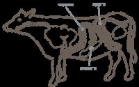 Круга говяжья (пучок)